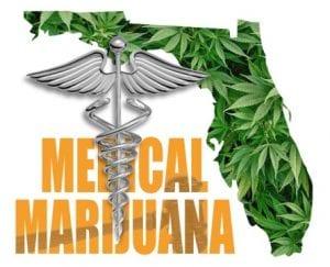 TALLAHASSEE, Fla. — Florida Supreme Court approves medical marijuana initiative for November ballot.